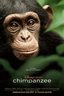 oscar the chimpanzee
