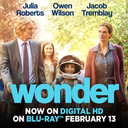 Wonder_500x500_ENG_Use_Before_Feb_13
